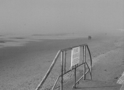 scala 25 plage silhouettes.jpg