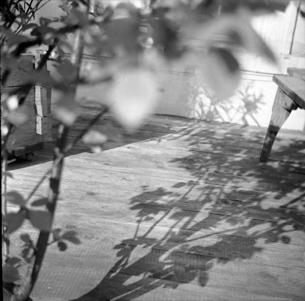ombre au 13.jpg