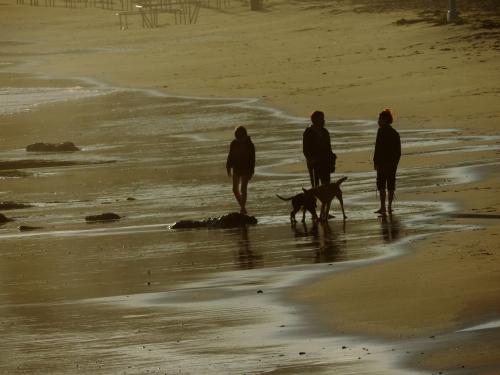 2014.06.30.LS.Sur la plage1.jpg