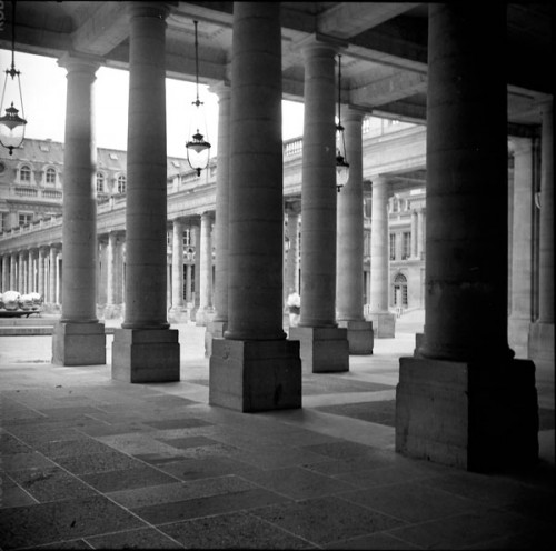 Palais Royal les pilersb.jpg
