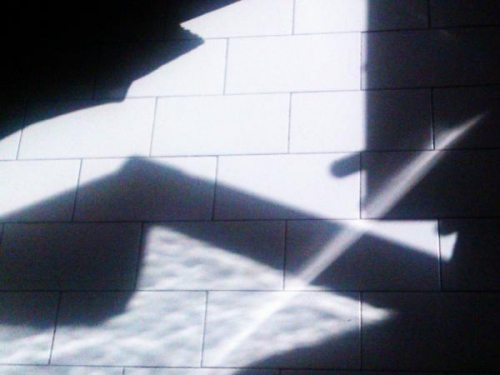 Carvos Loup, photolittérature