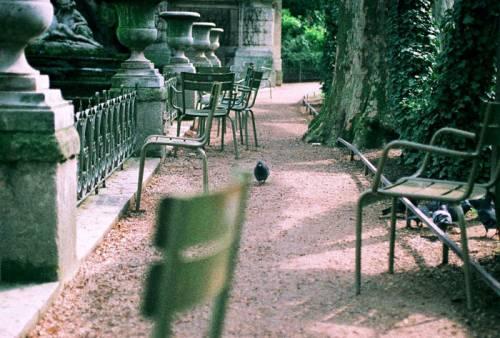 Jardin du Luxembourg, Sara