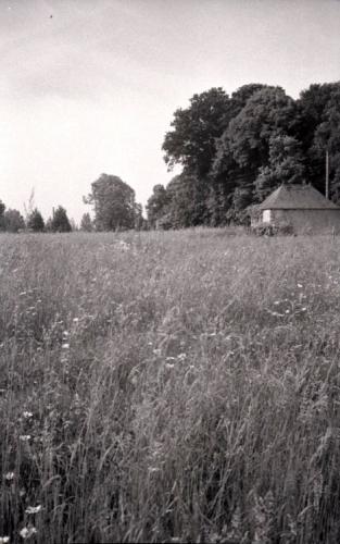 1979.PontHus467.jpg